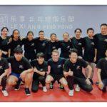 Mannschaftserfolge mit dem richtigen Tischtennis Trainingsplan erzielen